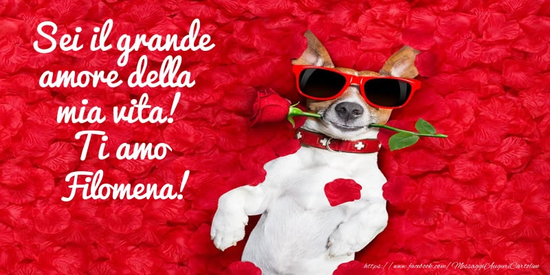 Cartoline d'amore | Sei il grande amore della mia vita! Ti amo Filomena!