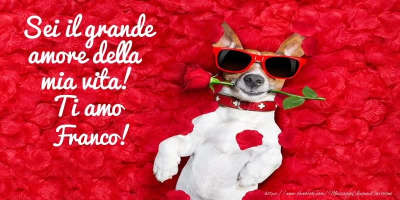 Cartoline d'amore   Sei il grande amore della mia vita! Ti amo Franco!