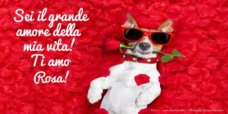 Cartoline d'amore | Sei il grande amore della mia vita! Ti amo Rosa!